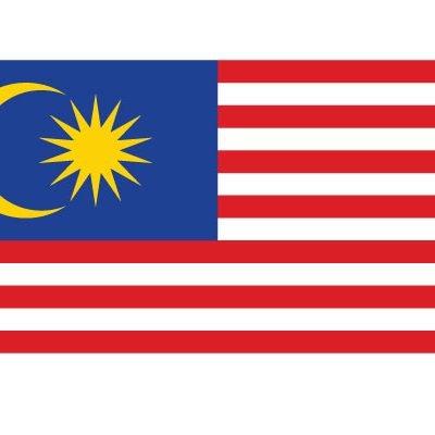 flag-my