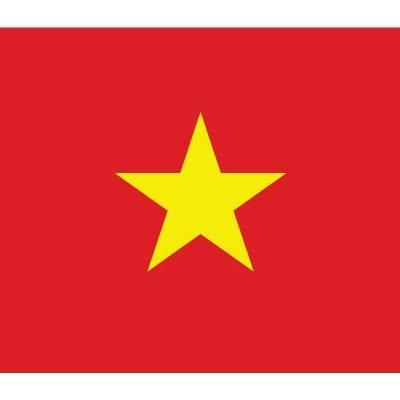 Флаг-VN